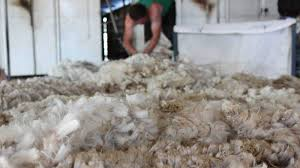 aislamientos sostenibles lana de oveja