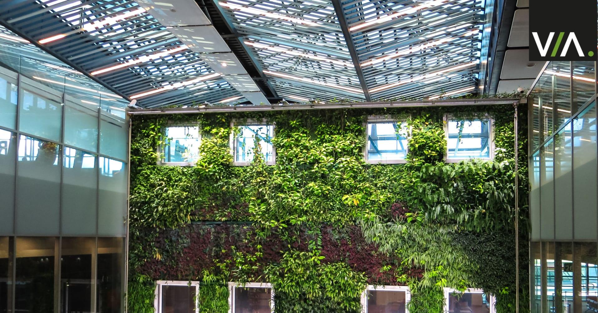 Jardines Verticales en los Edificios